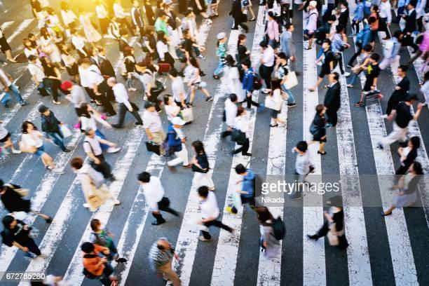 Busy Zebra crossing in Japan