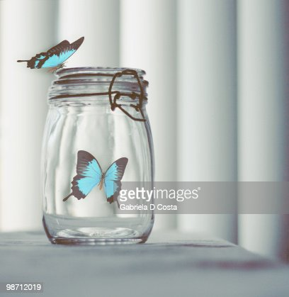 Butterflies trapped in glass