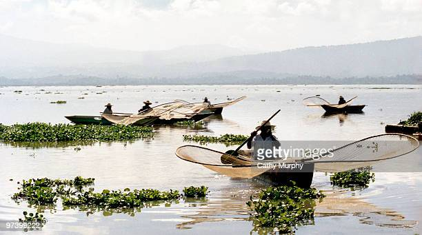 Butterfly fishermen on Lake Patzcuaro in the state of Michoacan work with their distinctive nets Mexcio 2003