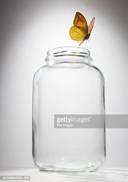 Butterfly flying out of glass jar, close-up