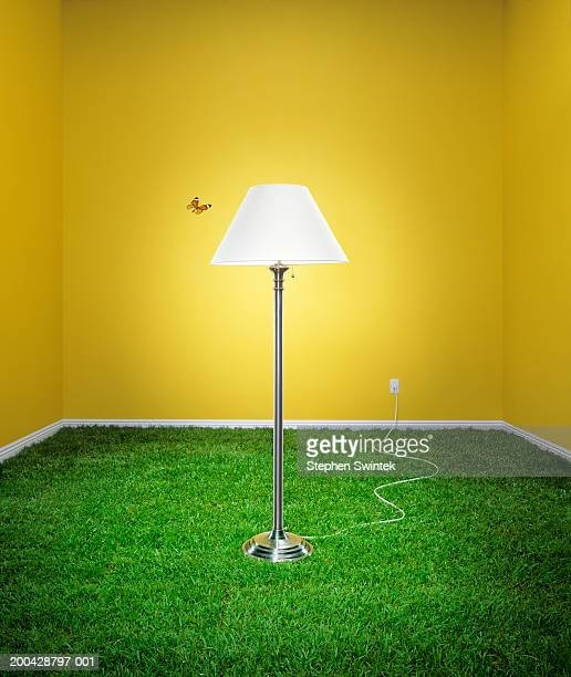 Butterfly flying past lamp in living room, grass covering floor