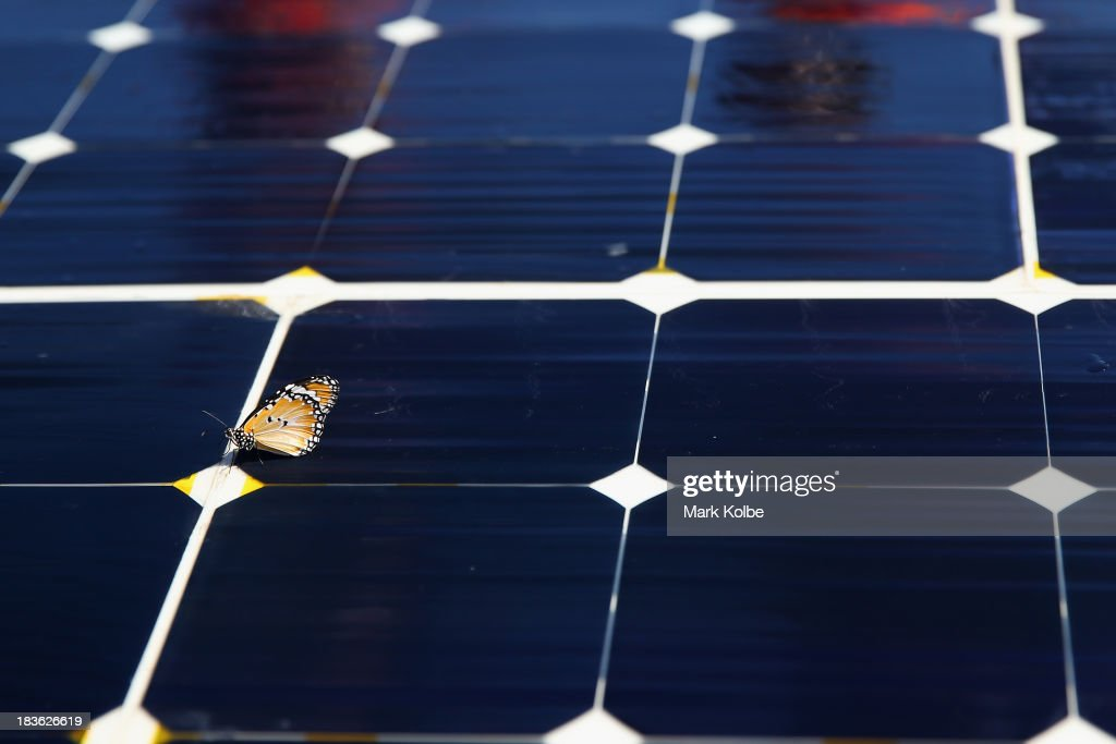 A butterfly is seen on the solar panels of Luminos from the Stanford Solar Car Project, Stanford University in the United States of America during a control stop on Day 3 on October 8, 2013 in Kulgera, Australia. Over 25 teams from across the globe are competing in the 2013 World Solar Challenge - a 3000 km solar-powered vehicle race between Darwin and Adelaide. The race began on October 6th with the first car expected to cross the finish line on October 10th.