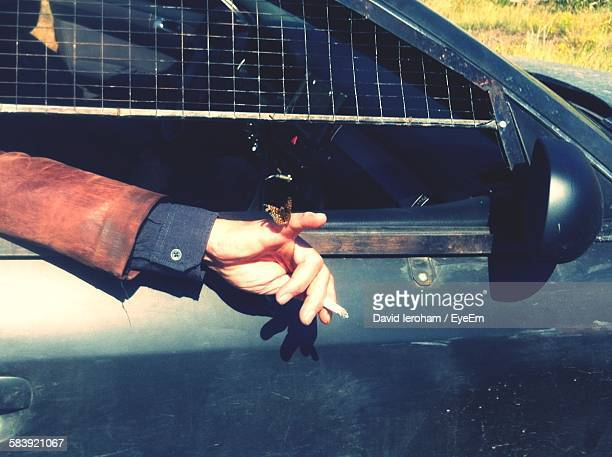 Butterfly On Cropped Hand Of Man Holding Cigarette While Sitting In Car