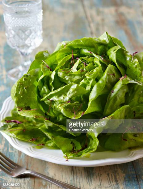 Butterleaf Salad with Micro greens and Oil Dressing