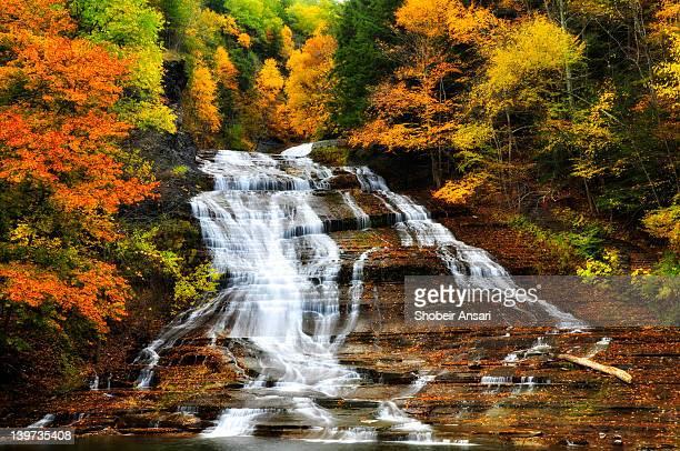 Buttermilk falls State Park, Finger lakes