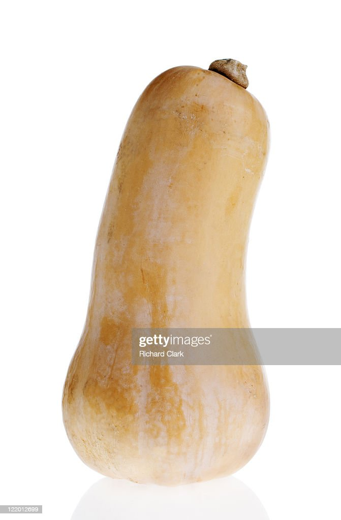Butternut squash : Stock Photo