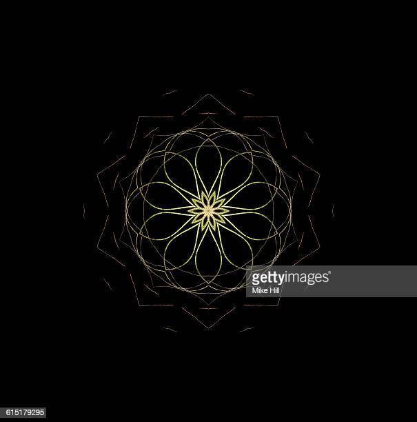 Butzil Airplant Mandala