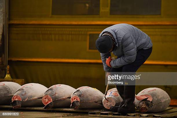 A buyer inspects frozen tuna prior to the first auction of the year at Tsukiji Market in Tokyo Japan on Thursday Jan 5 2017 Kiyomura KK operator of...