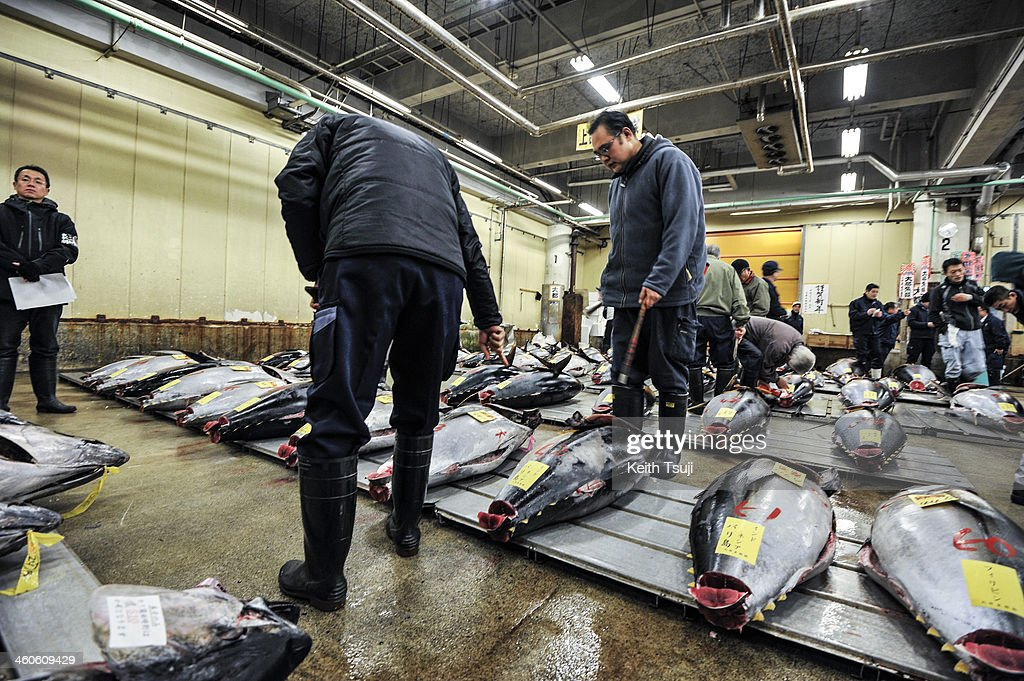 Buyers inspect Bluefin tuna carefully before the year's first tuna auction at Tsukiji Fish Market on January 5, 2014 in Tokyo, Japan. Tsukiji Fish Market is best known as one of the world's most famous fish markets, handling thousands of tons of seafood daily.