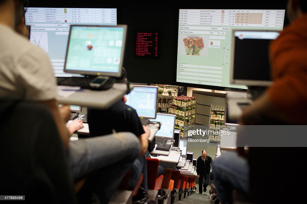 Buyers use desktop computers as flowers are displayed on large screens at FloraHolland, the largest flower auction in the world, in Aalsmeer, Netherlands, on Tuesday, March 11, 2014. The Netherlands' flower and plant exports, the world's biggest, fell 2.3 percent last year as declining consumer purchasing power was compounded by cold spring weather in Europe and a summer heat wave that hurt sales. Photographer: Jasper Juinen/Bloomberg via Getty Images