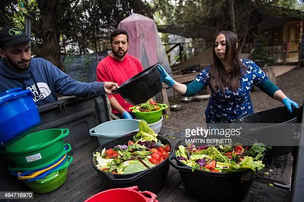 STORY by Giovanna Fleitas Chilean veterinarian Nicole Rivera and colleagues prepare food at a primate rehabilitation centre in Peñaflor 30 km...