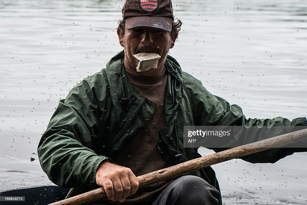 STORY by Hector Velasco A fisherman covered by mosquitos carries his fishing license in his mouth as he is stopped by the environmental military police in the Paraguay river, in Corumba, a municipality in the Brazilian state of Mato Grosso do Sul gateway to the Pantanal, on April 4, 2013. Often referred to as the world's largest freshwater wetland system, the Pantanal, is a stunning biodiversity sanctuary which extends through millions of hectares in central-western Brazil, eastern Bolivia and eastern Paraguay. It includes sanctuaries for migratory birds, nursery grounds for aquatic life, and refuges for such creatures as the yacare caiman, deer, and jaguar. Some 4,500 different species live in the Pantanal. AFP PHOTO/Yasuyoshi CHIBA