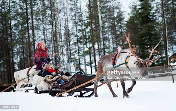 STORY by IGOR GEDILAGHINE FILES MORE IN IMAGE FORUM A woman in traditional Laplander costume rides with a group of tourists on a reindeer sled in the...