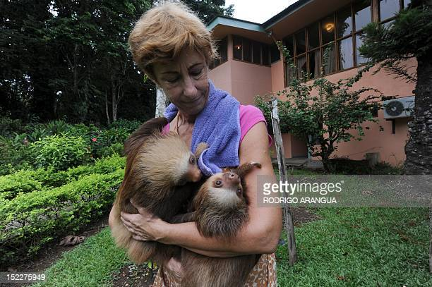 STORY by Isabel Sanchez FILES Claire a worker at the Sloth Sanctuary in Penshurt some 220 km east of San Jose Costa Rica holds baby sloths on August...