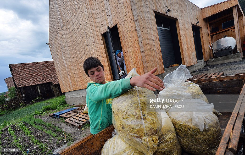 STORY by ISABELLE WESSELINGH - Picture taken on May 25, 2013 shows a boy loading bags on a carriage in front of a factory processing elder flowers in the village of Saschiz in the Transylvania region of Romania. If elder trees add to the beauty of Romania's landscapes, their white flowers help its rural economy grow when they are turned into cordials exported to Britain and Japan. Every year Romanians anxiously await the blossom season in May and June to pick the delicately-scented flowers and concoct a traditional soft drink called 'socata'. AFP PHOTO / DANIEL MIHAILESCU