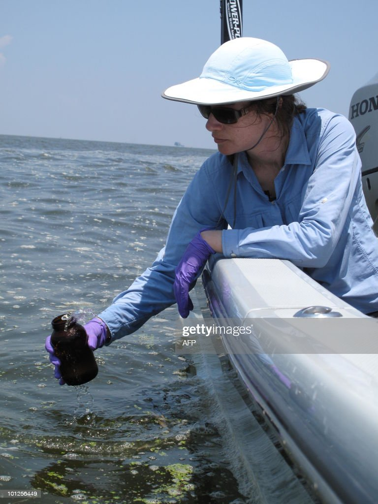 STORY by Karin Zeitvogel, US-oil-pollution Angelina Freeman, a coastal scientist for the Environmental Defence Fund, takes a sample of oil at Pass a L'Outre, Louisiana, on May 28, 2010. An estimated 29.5 million gallons of oil have spewed into the Gulf of Mexico in the five weeks since a ruptured pipe a mile below the surface began gushing crude after an explosion on board BP's Deepwater Horizon toppled the offshore rig, killing 11 workers and sending the platform sinking to the sea floor. AFP PHOTO/ Karin ZEITVOGEL