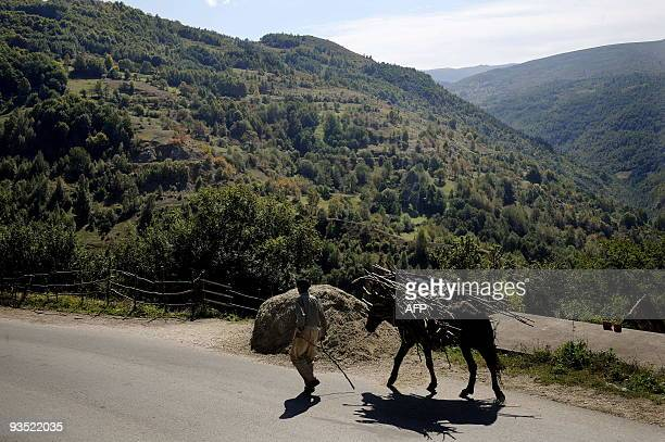 By Pierre Glachant A Kosovo Gorani cattle farmer goes to his field in the village of Globocica on September 23 2009 A tiny community of ethnic...