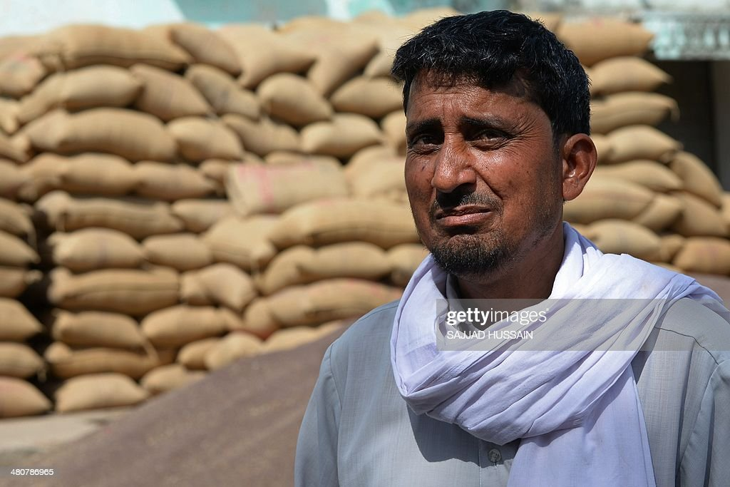 RURAL by Trudy Harris Indian farmer Zakir Khan speaks with an AFP reporter at a crops market in Alwar district of the western state of Rajasthan...