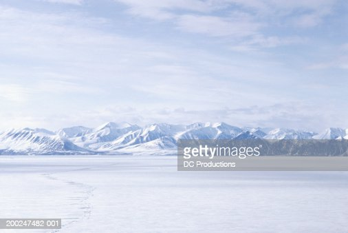 Bylot Island, NWT, Canada : Stock Photo
