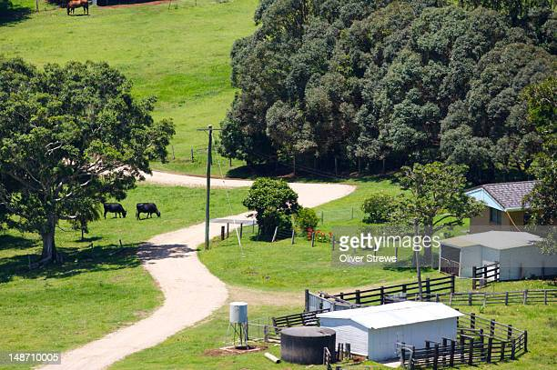 Byron Bay farm.