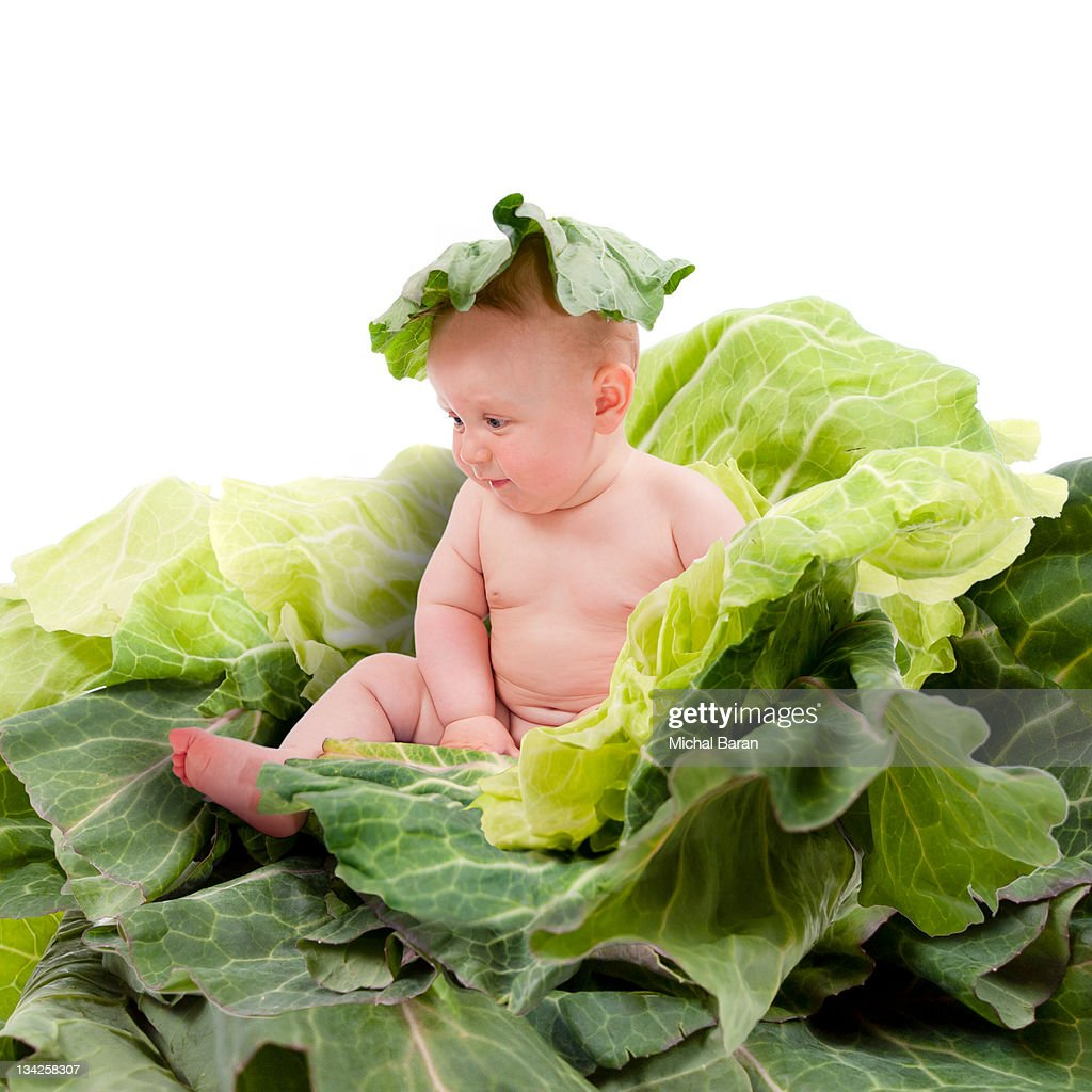 how to cook baby cabbage