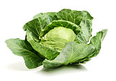 Cabbage on a white background
