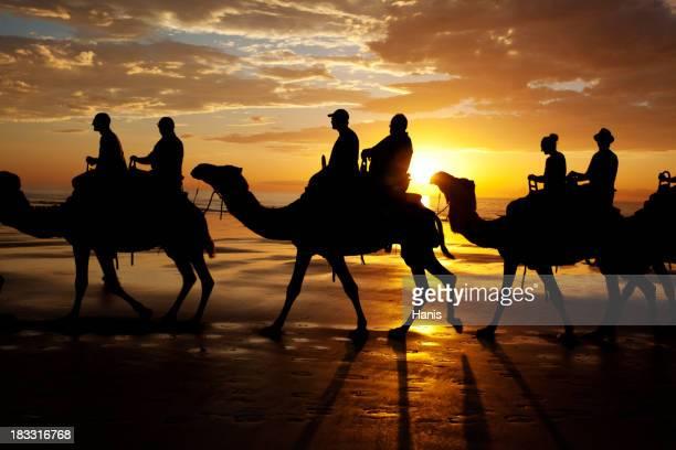 Playa Cable paseo en camello al atardecer