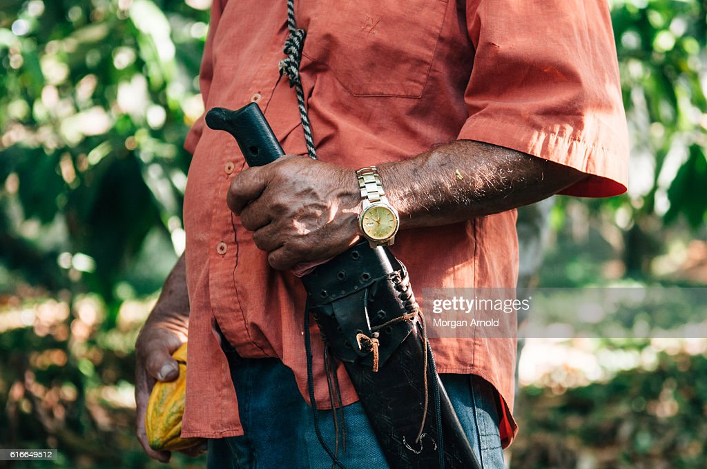 A cacao farmer holds a cacao pod in one hand and his machete in the other : Stock Photo