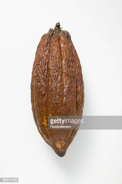 Cacao fruit on white background, close up