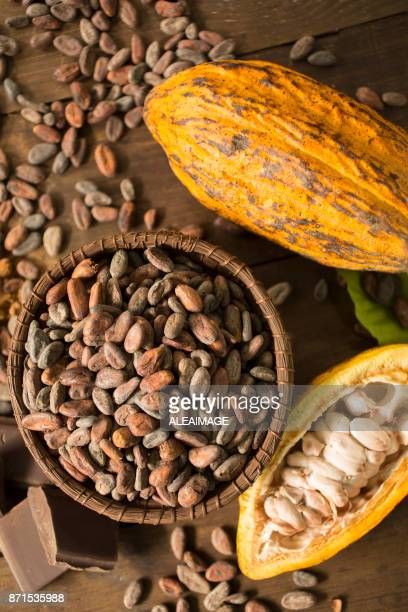 Cacao fruits and nibs composition