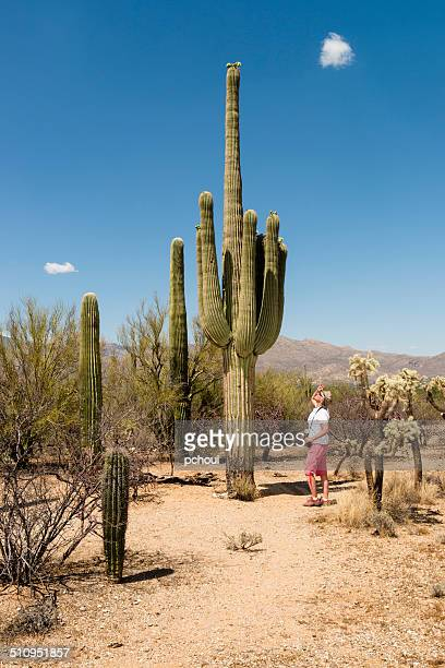 Cactus and woman