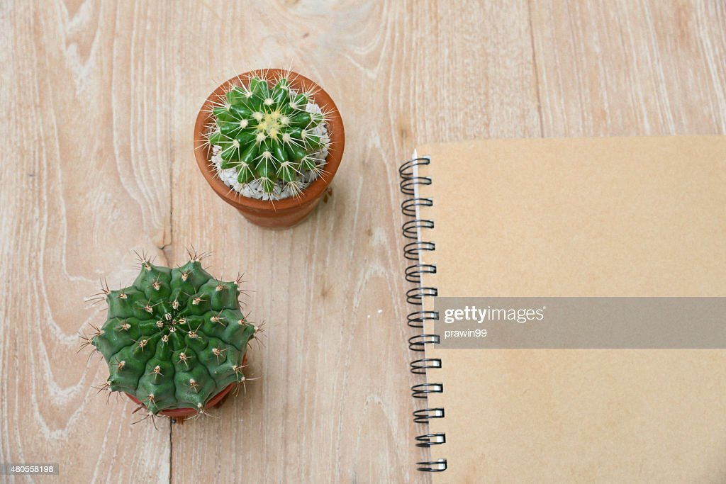 cactus background and decorated on table : Stock Photo