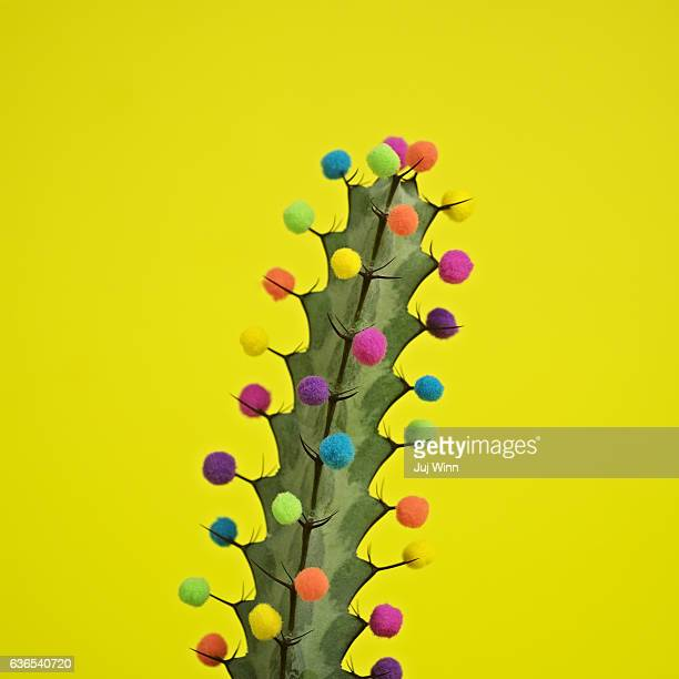 Cactus decorated with puffballs