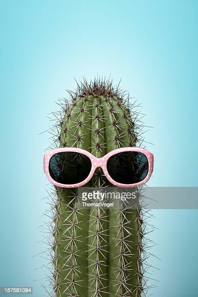 Cactus with pink sunglasses on blue
