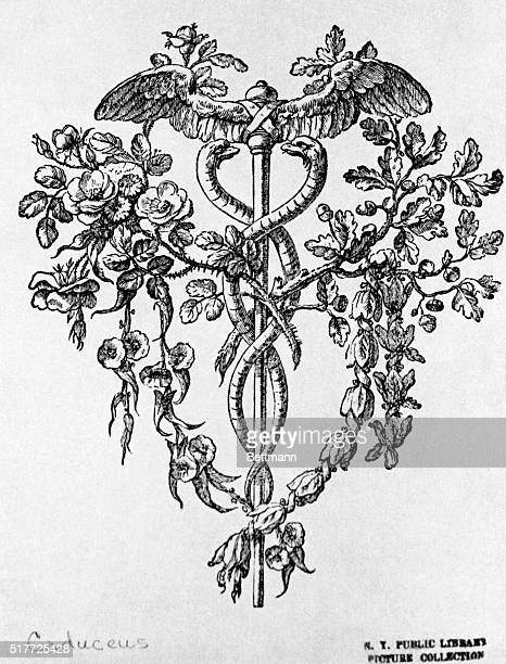 Caduceus with decorative floral design of the 19th Century Undated Woodcut BPA2# 633