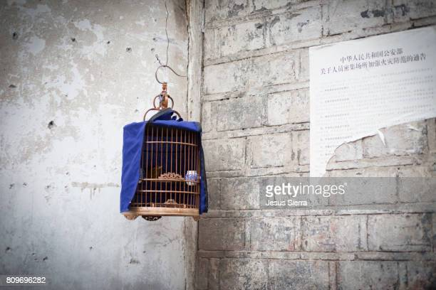 Cage in a street of Fenghuang, Hunan Province, China
