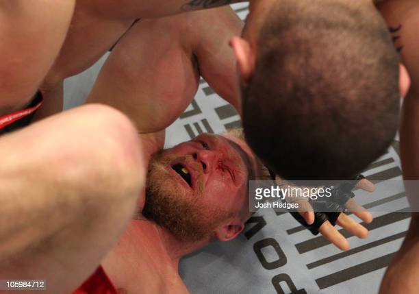 Cain Velasquez continues to punch as Brock Lesnar is on the ground in the fiirst round during the heavyweight title bout during UFC 121 on October 23...