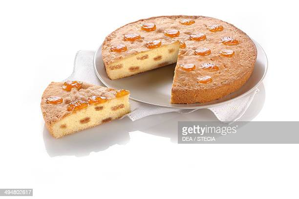 Cake with apricot jam