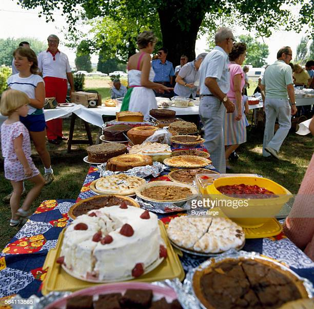 Cakes and pies line the tables at a family reunion in MayodanNorth Carolina