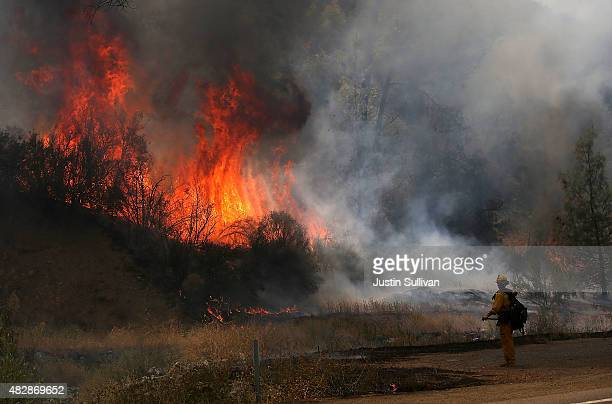 Cal Fire firefighter is dwarfed by huge flames during a backfire operation to head off the Rocky Fire on August 3 2015 near Clearlake California...