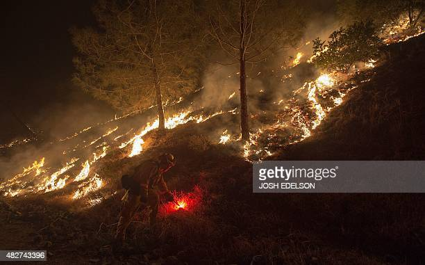 A Cal Fire firefighter lights back fires in an attempt to control the Rocky fire near Clear Lake California on August 2 2015 The fire has charred...