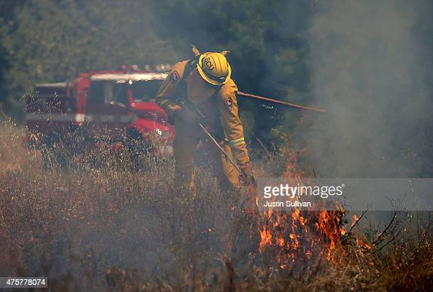 Cal Fire firefighter practices extinguishing a grass fire during a live fire training on June 3 2015 in Mt Hamilton California Cal Fire firefighters...