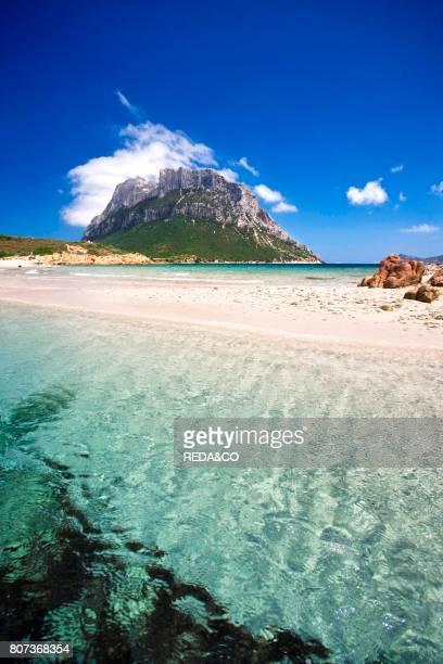 Cala Spalmatore cape Isola Molara e Tavolara islands Porto San Paolo Loiri Sardinia Italy Europe
