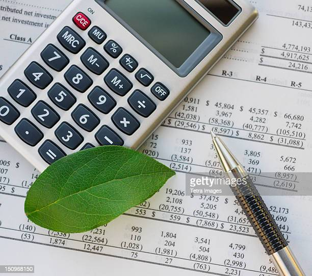 Calculator with spreadsheet and green leaf