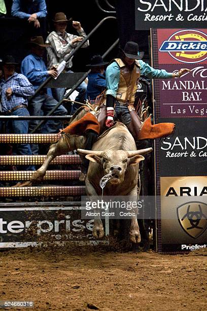 Caleb Sanderson on his bull Big Tex during the Championship Round of the PBR event Sanderson was bucked off in 27 seconds The three day event was...