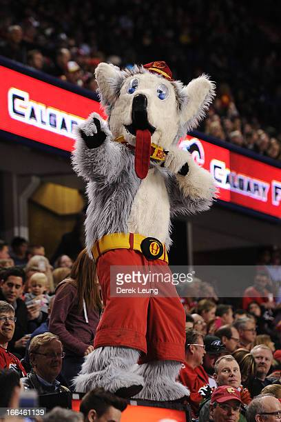 Calgary Flames mascot Harvey the Hound rallies the crowd during an NHL game against the Phoenix Coyotes at Scotiabank Saddledome on April 12 2013 in...