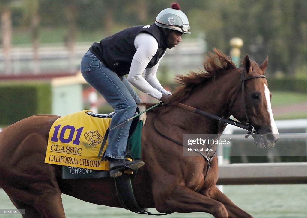 2016 Breeders' Cup World Championships  - Previews : News Photo