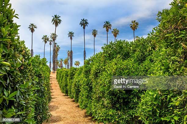 California Citrus State Historic Park, Riverside