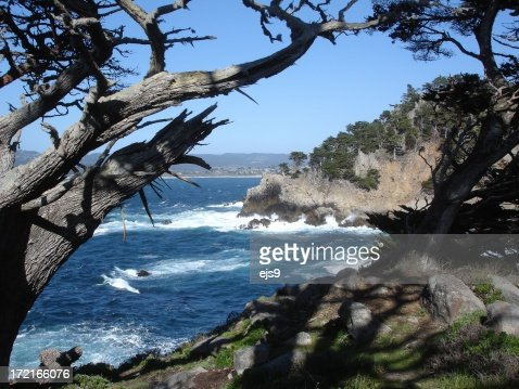 California Coastal scene near Monterey