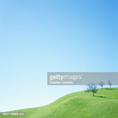 USA, California, Corrizo Plane National Monument, Oak Trees on hill